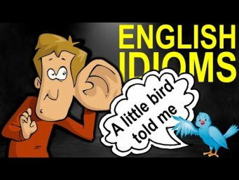 English Idioms: A little bird told me (Max Heart)